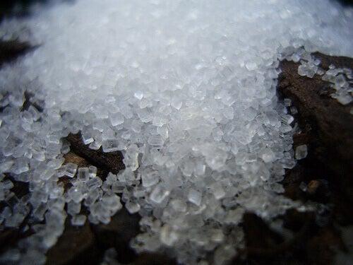 Солодкий цукор
