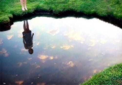 """Відкрийте для себе """"Закон дзеркала"""""""