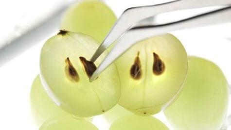 8 лікувальних переваг виноградного насіння