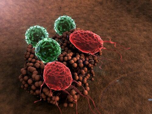 5 симптомів ослабленої імунної системи