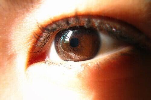 коричневий колір очей