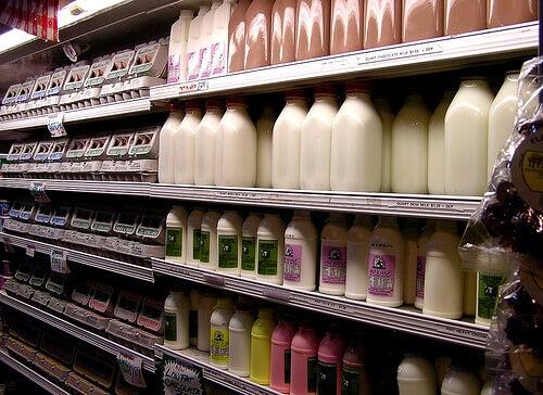 Молочні продукти та їх вплив на кишечник