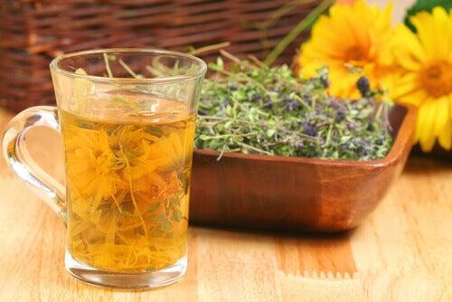 лікарські рослини та чай