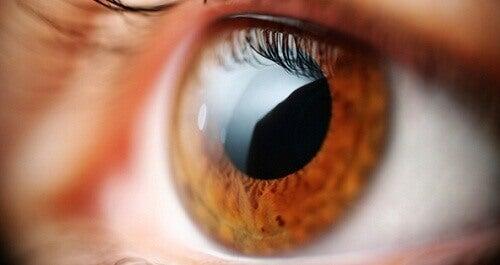 Вправи для зняття напруги очей