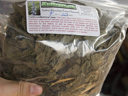 пакет висушеної шавлії для приготування чаю чи настою