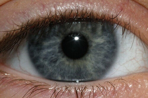 synie-oko-Jenn-Durfey
