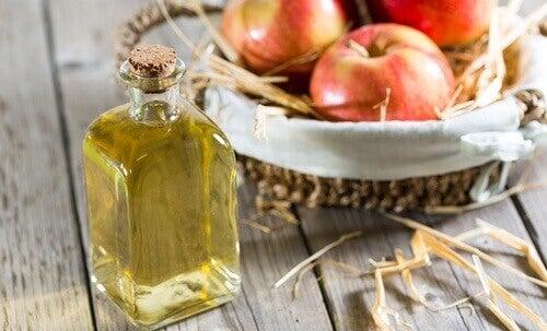 Яблучний оцет: корисні властивості та використання