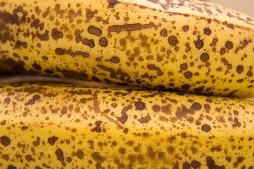 banan-21