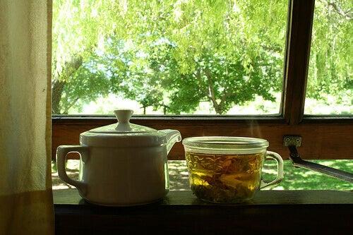 чай з іглиці