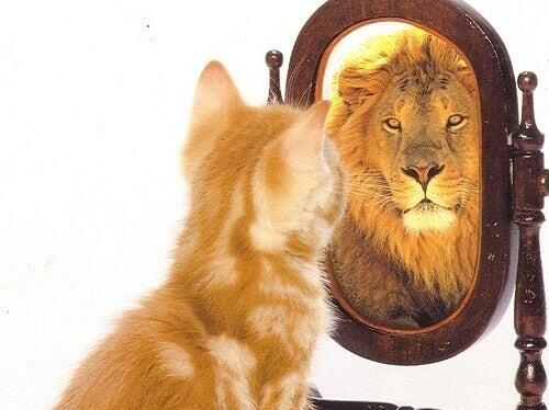 схуднення підніме вашу самооцінку