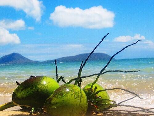 користь кокосу