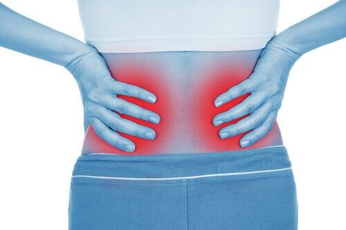 хвороби нирок та їх діагностика