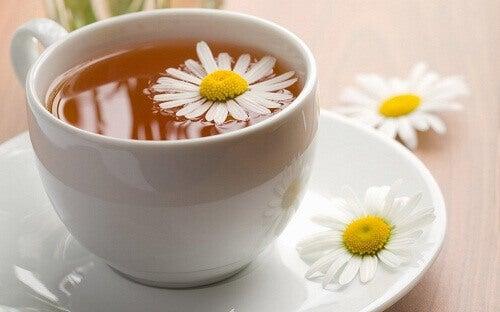 Трав'яні чаї від безсоння