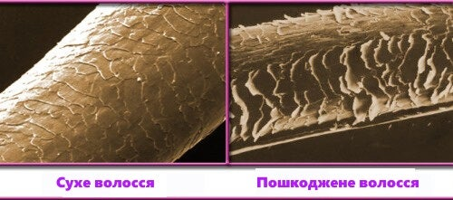 foto_poshkodzhenogo_volossya (1) (2)