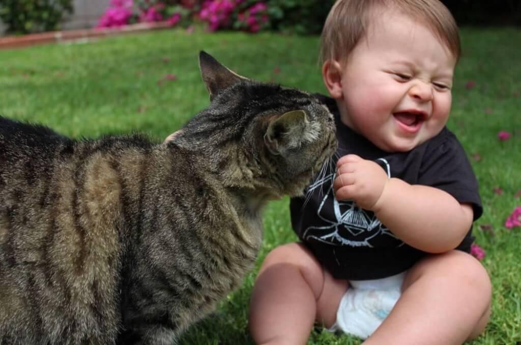 дитина грається з кішкою