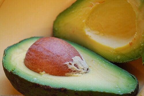 насіння авокадо
