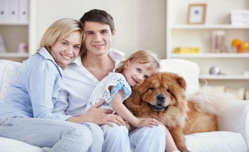 мама, тато, дочка і пес сидять на дивані