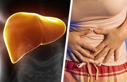 Як відновити печінку