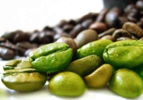 zeleni-kavovi-boby