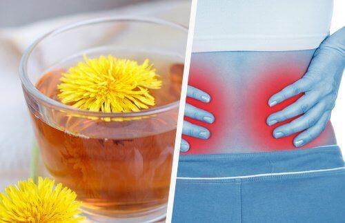 5 простих способів вивести токсини з нирок
