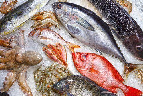 риба жирних сортів