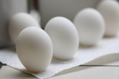 білі яйця