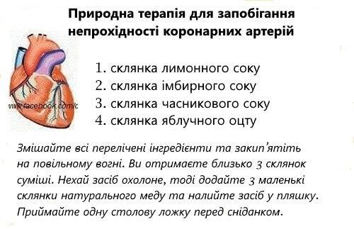 koronarna-arteria (2)