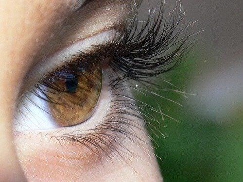 Вії та очі
