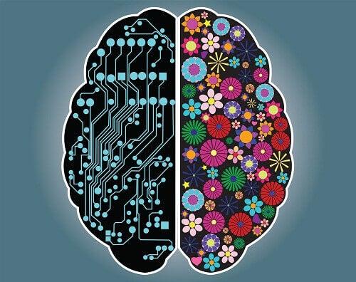 Дізнайтеся яка ви людина: раціональна чи інтуїтивна