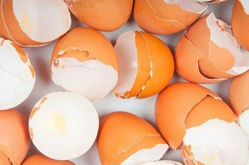 Незвичні способи використання яєчної шкаралупи