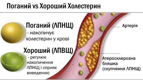 2-cholesterol