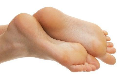 3-zdorovi-nohy