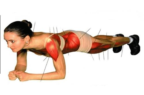 Вправа «планка» для тренування преса і всього тіла
