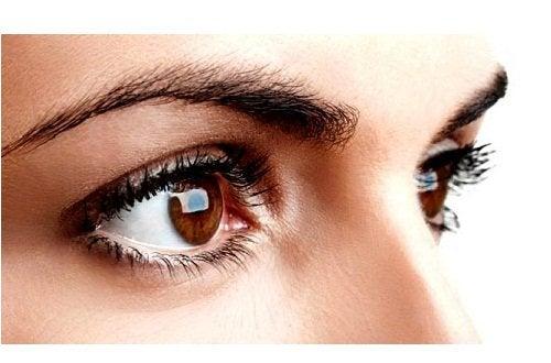 3-korychnevi-ochi