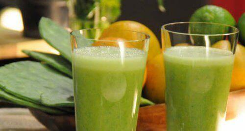 кактус регулює рівень цукру в крові