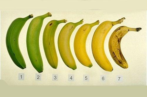 Які банани найкорисніші: стиглі чи зелені?