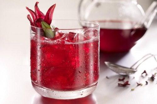 hibiscus-chay