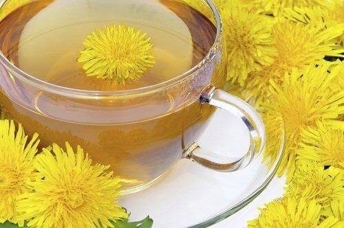 Чай з кульбабою проти запалення печінки
