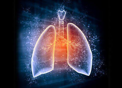 чисті легені