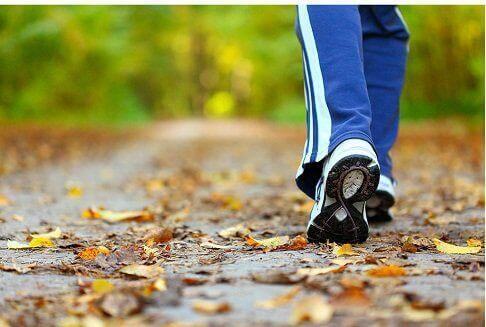 піша прогулянка