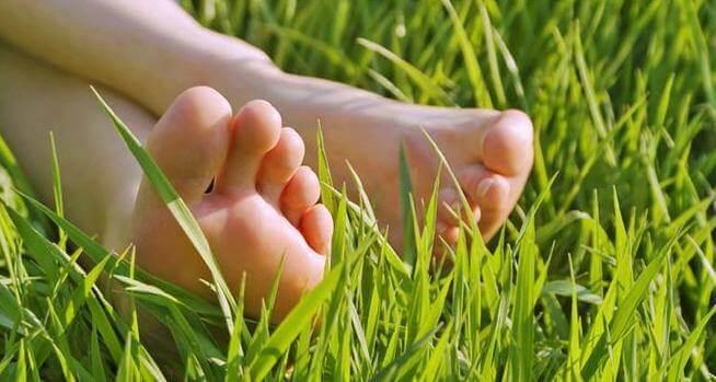 стопи на траві