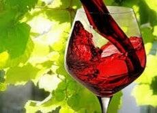 1-chervone-vyno