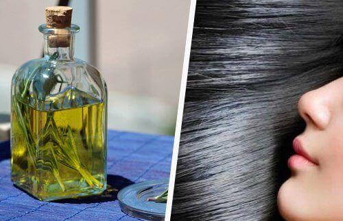 олія розмарину серед олій для росту волосся