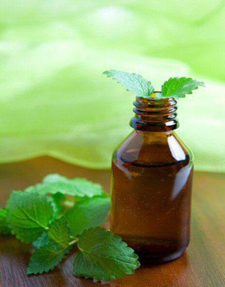 м'ятна олія та способи її використання