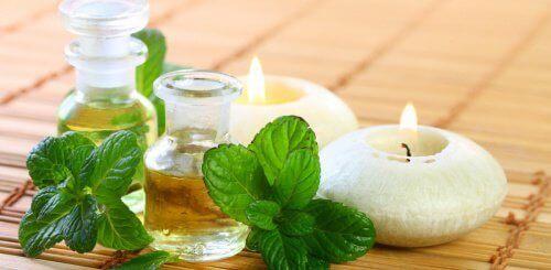 Як зробити м'ятну олію для вашого здоров'я