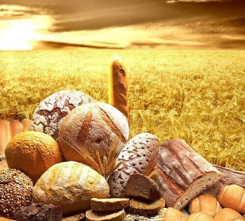 хлібо-булочні вироби