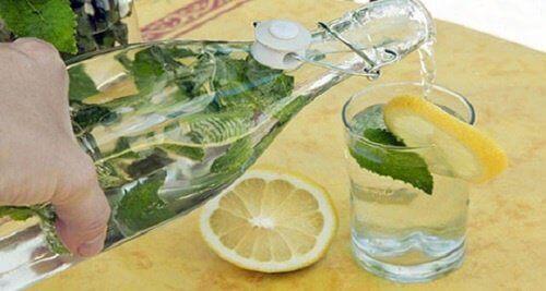 lymonna-voda-kholesteryn