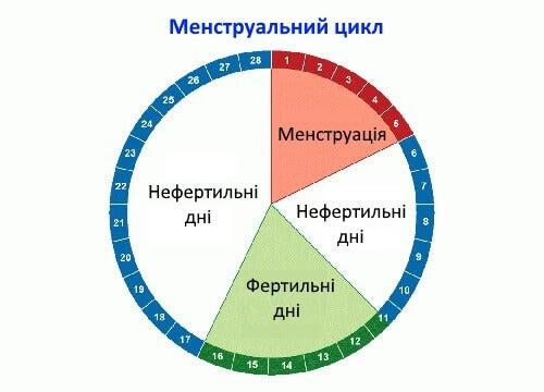 menstrualnyi-tsykl