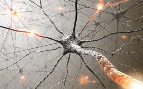нейрон з імпульсами
