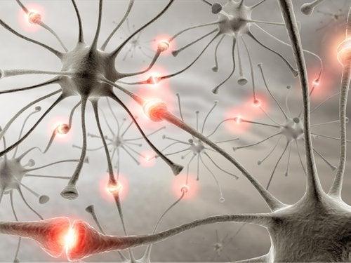 нейрони у мозку